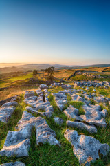 Wall Mural - A limestone pavement at the Winskill Stones near Settle in the Yorkshire Dales