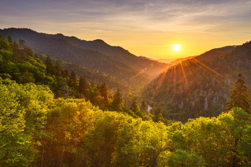 Foto op Aluminium Honing Newfound Gap Smoky Mountains