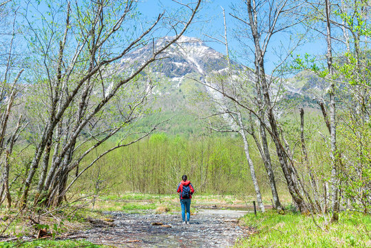 FeFemale hiker standing in the forest of Kamikochi in Northern Japan Alps.male hiker standing in the forest of Kamikochi in Northern Japan Alps.