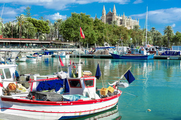 At the fishing port of Palma de Mallorca with the cathedral La Seu
