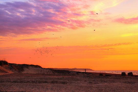 Thorup Strand - Denmark
