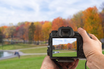 Photography concept with hand holding a modern DSLR capturing autumn scenery