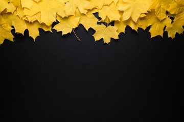 Autumn background, fall foliage border
