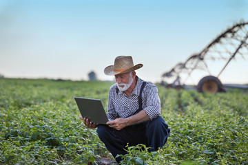 Acrylic Prints Olive Farmer with laptop in front of irrigation system in field