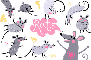Set of funny rats for design. Cute little mice in different poses. Merry mouse romp. Vector illustration