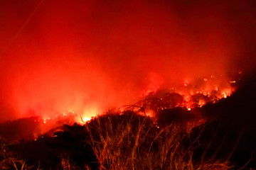 Amazon forest fire disater problem.Fire burns trees in the mountain at night. Fototapete