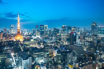 Fotomurales - 東京 夜景