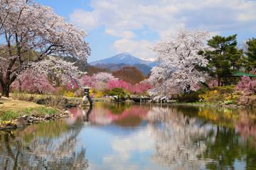 緑水苑の春(福島県・郡山市)
