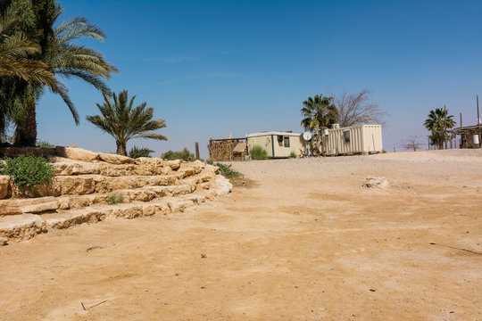 Desert Settlement with Minimalistic Container Homes and Palms Trees