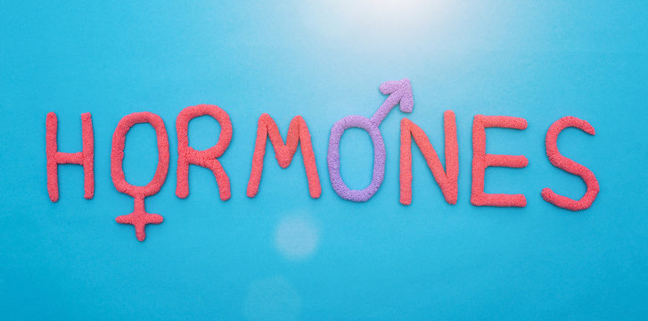 The word hormones from red plasticine on a blue background concept of all human hormones, inscription