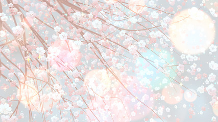 Wall Mural - Beautiful sakura with glowing lights effect. 3d rendering picture.