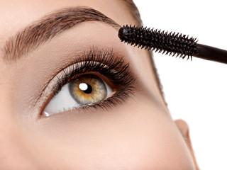 women eye with long black eyelashes and makeup brush