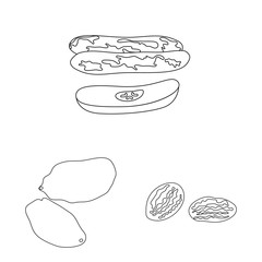 Fototapete - Vector illustration of food and raw icon. Collection of food and nature stock vector illustration.