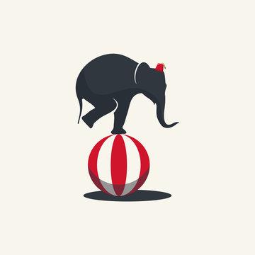 elephant circus vector logo illustration