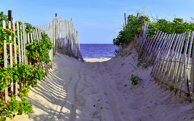 Beach scene with sand dunes and fencing by ocean