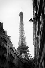 Eiffel tower and haussmannian building
