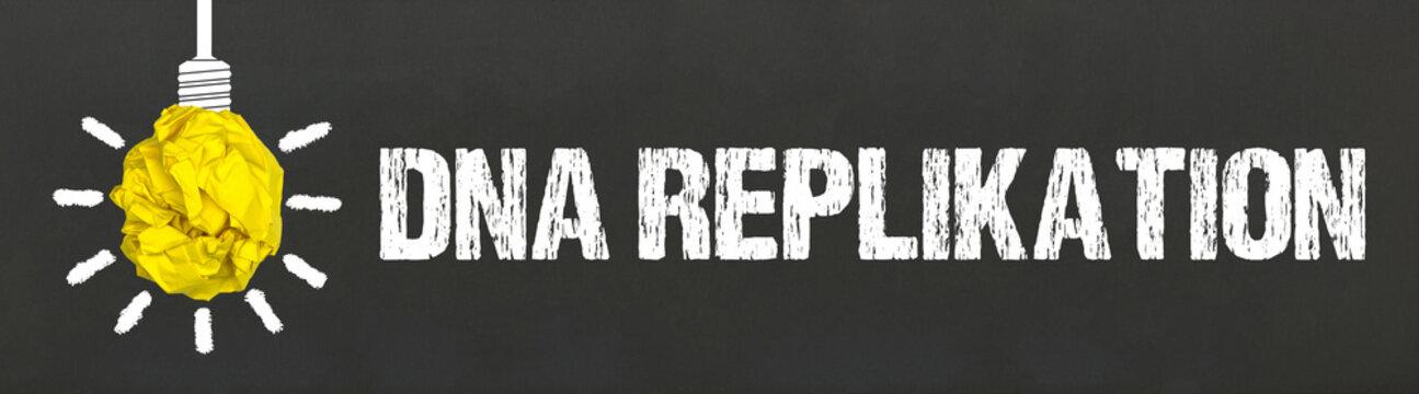DNA Replikation