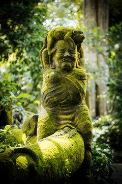 Monkey Forest Sanctuary, Ubud, Bali, Indonesia