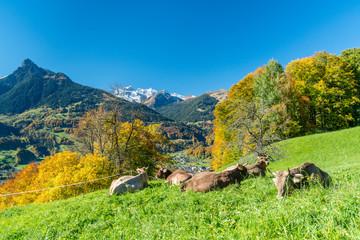 Wall Mural - Herbst in den Alpen
