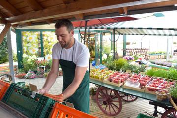 biohof mit Hofladen - Verkauf und Handel von frischem Bio Obst und Gemüse beim Erzeuger - Mann verkauft // biohof with farm shop - sale and trade of fresh organic fruit and vegetables at the grower
