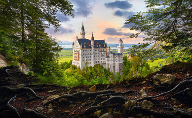 Fairy-tale Neuschwanstein Castle in Bavaria, Germany. View from the bluff with tree roots at famous vintage landmark. Picturesque evening sunset landscape. Wall mural