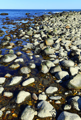 Rocky shoreline, characteristic of Long Island Sound and north shore of Long Island