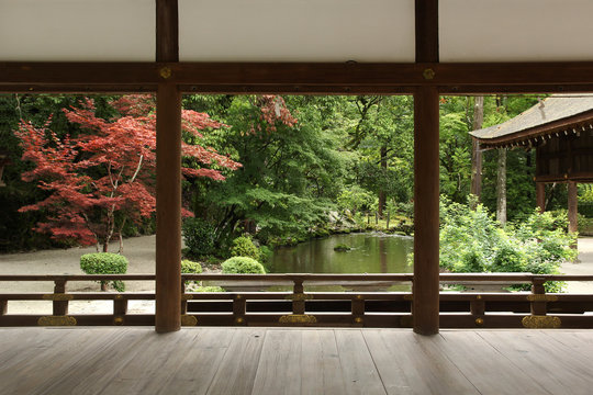 Beautiful japanese garden in Kyoto (Kamigamo shrine)