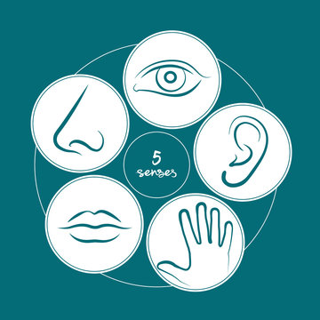 5 senses in a circle