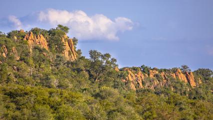 Wall Mural - Rhyolitic rocky outcrops or koppie