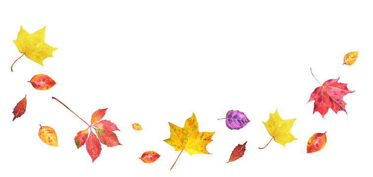 Watercolor banner with colorful autumn  leaves  isolated on white background. Fall illustration with space for text good for greeting card, banner, flyer.