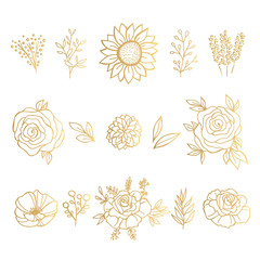 Collection of Gold Hand Drawn Floral Elements. Vector Frames and  Leaves, Flowers and Herbs