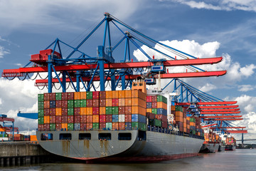 Container Ship and Terminal without Srcipt