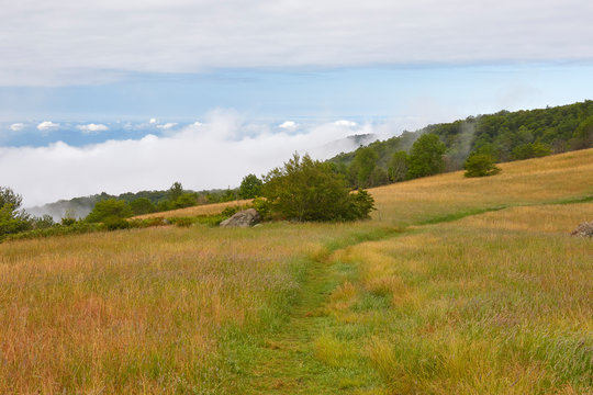 View from the Appalachian Trail in the grassy meadows atop Cole Mountain (a.k.a., Cold Mountain) in Amherst County, Virginia