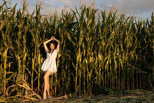 Brunette in a blue dress posing in a corn field