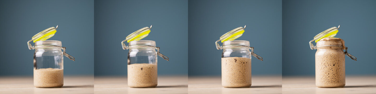 Collage of four photos of home made starter yeast growing