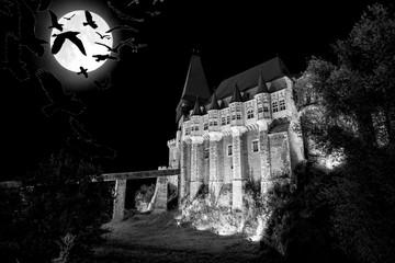 medieval Hunedoara castle in Transylvania, full moon, crows at night - Halloween background