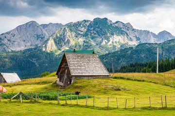 Landscape view in village Bosaca in National park Durmitor, Montenegro