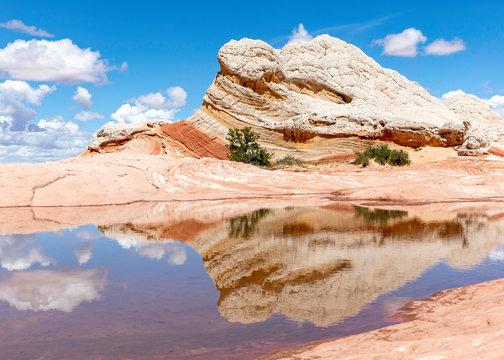 White Pocket Vermillion Cliffs Arizona with Reflection