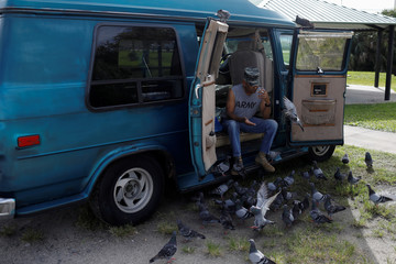 A man feeds pigeons at a park ahead of the arrival of Hurricane Dorian in Titusville