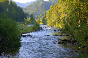 Calm river flowing through the forest to the foot of the mountains.