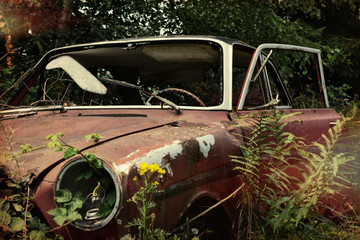 old car, overgrown