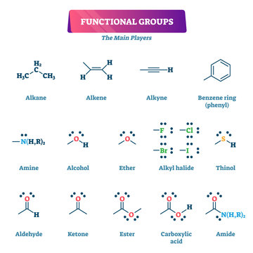 Functional groups vector illustration. Chemical reactions explanation list.