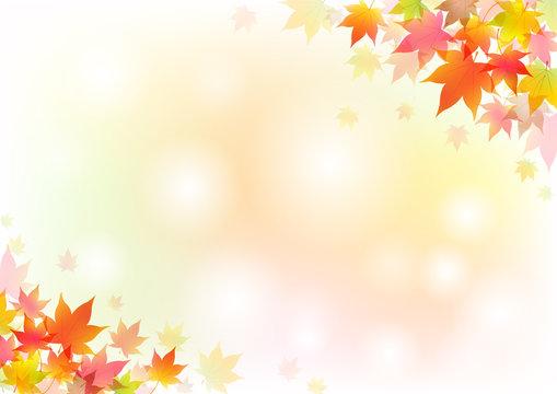 秋背景16