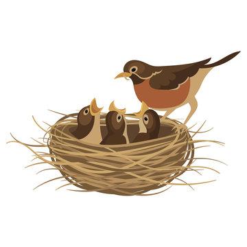 Cartoon bird's nest with chicks. Vector illustration for children. Springtime.