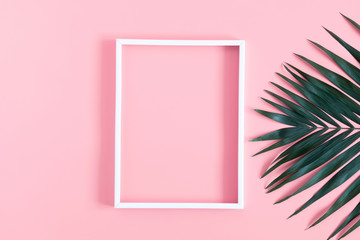 Summer modern composition. White photo frame, tropical green leaves of palm tree on pastel pink background. Flat lay, top view, copy space