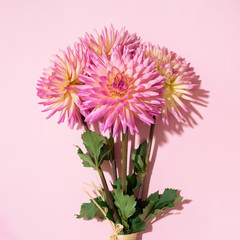 Keuken foto achterwand Dahlia Dahlia ball-barbarry flowers on pink background. Copy space. Top view. Flat lay. Floral design. Pastel summer flower for romantic date or wedding card. Florist concept
