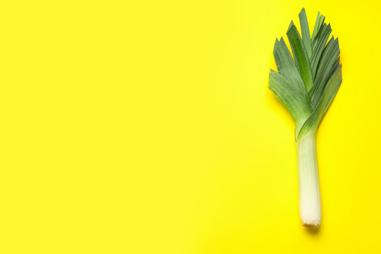 Fresh raw leek on color background, top view with space for text. Ripe onion