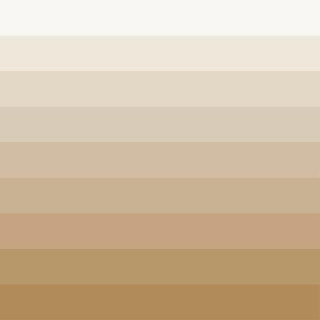Skin tones color palette vector illustration