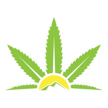 Cannabis sun farming logo icon illustration vector