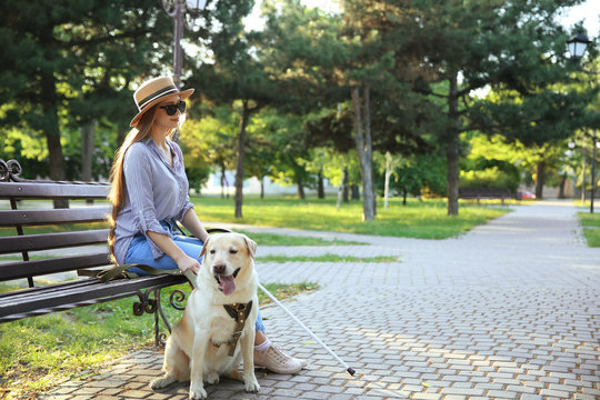 Young blind woman with guide dog in park